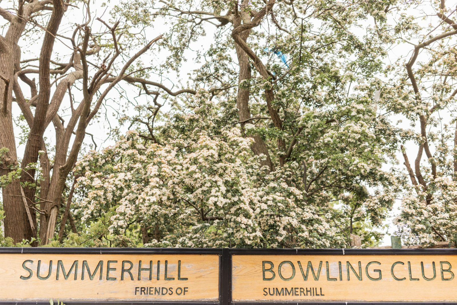Summerhill Bowling club wedding Newcastle
