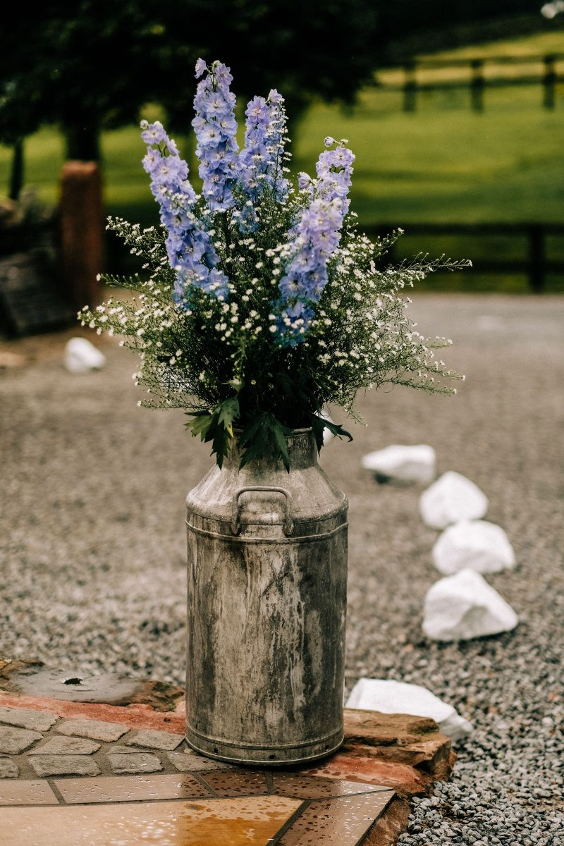 milk churn filled with purple flowers